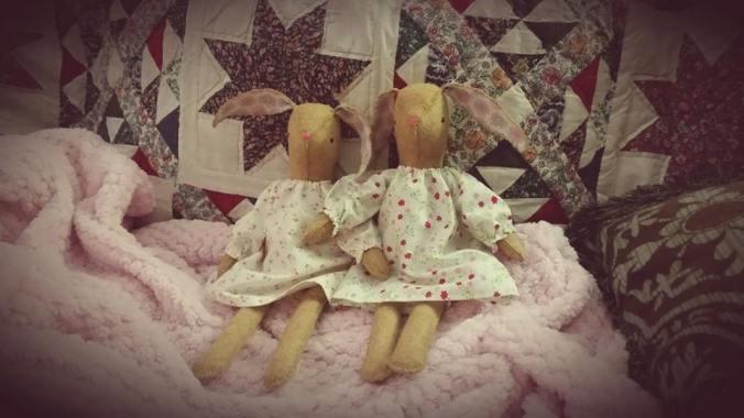 TwinBunnies